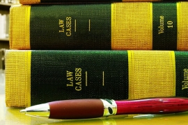 Услуги в судебном процессе